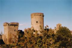 Come appaiono le due torri principali dopo i lavori di restauro eseguiti dalla ditta Edil Concordia_2006